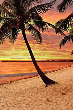 Marty Koch - Key West Beach