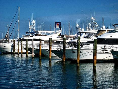 Key West Marina by Claudette Bujold-Poirier