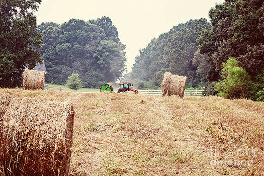 Kicking Up Dust by Jinx Farmer