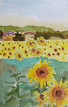 Sunflowers by Janet Butler
