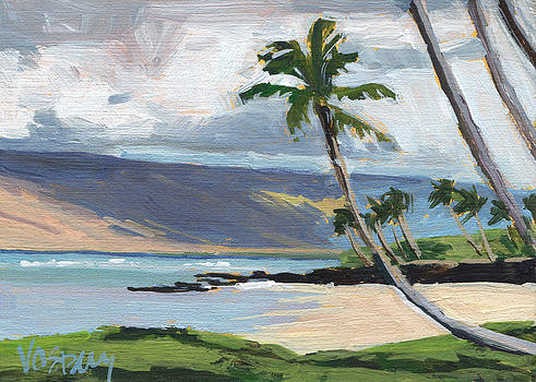 Kihei Beach 2 by Stacy Vosberg