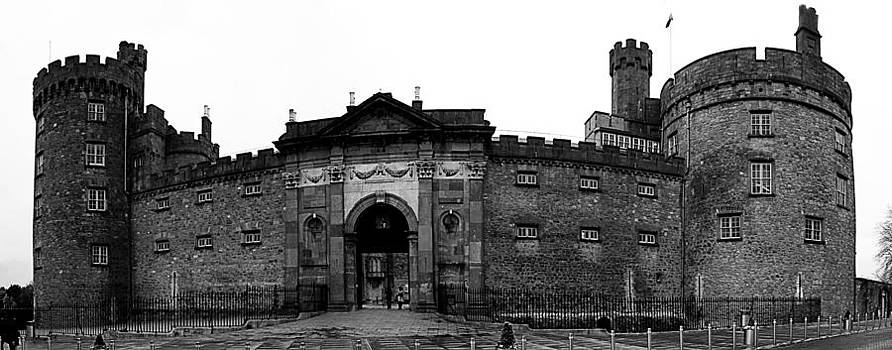 Kilkenny castle Ireland by Tony Reddington
