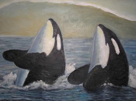 Sandra Lytch - Killer Whales