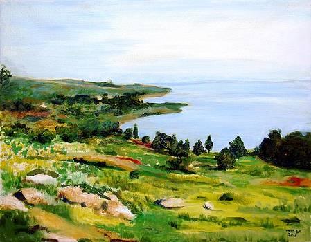 Kineret lake in Israel by Amatzia Baruchi