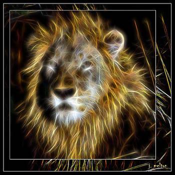 King by Jack Melton