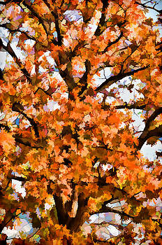 King of Autumn by Jeff R Clow