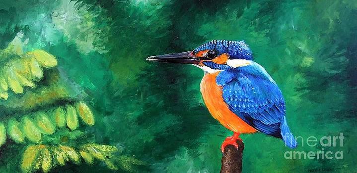 Kingfisher by Natalia Chaplin