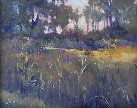 Kingwood Prairie by Judy Fischer Walton