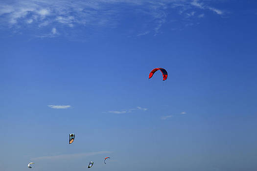 Kite Board Canopies And Blue Sky by Noel Elliot