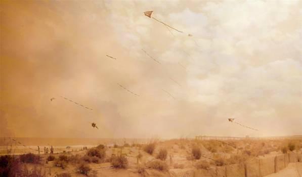 Rick Todaro - Kites