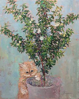 Kitten And Myrtle Bush by Galina Gladkaya