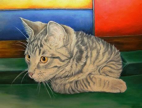 Kitten in a Side Pocket 2 by Pamela Humbargar
