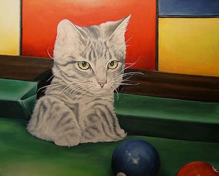 Kitten in a Side Pocket by Pamela Humbargar