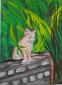 Kitten next door by Iris Devadason