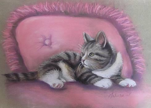 Kitten on Pink Pillow by Melinda Saminski