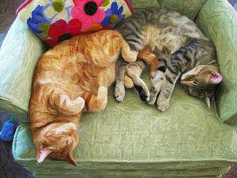 Kitty Love by Jennifer Randall