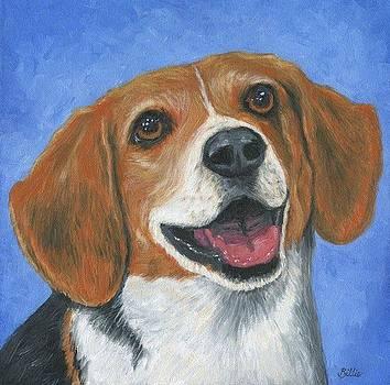 Knox the Beagle by Billie Mann