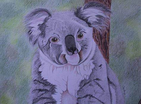 Koala by Carol De Bruyn