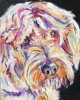 Kodiak by Judy  Rogan