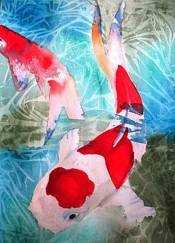 Kohaku Koi 2 by Sacha Grossel