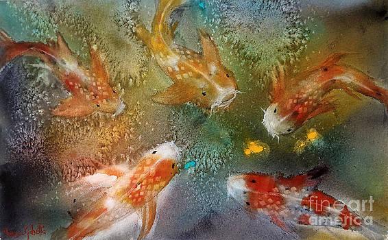 Koi fish by Marisa Gabetta