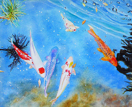 Koi in Aqua Water by Kathleen Ballard