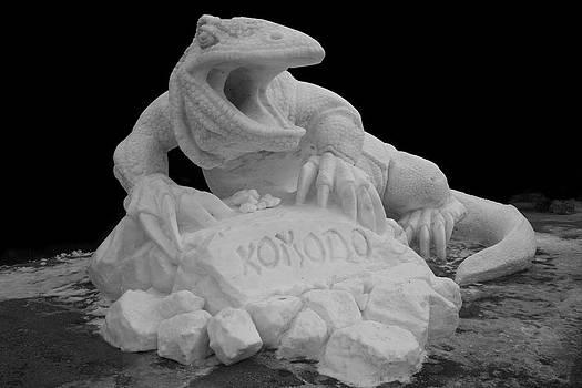 Komodo by Kevin Snider
