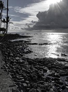 Daniel Hagerman - KONA ROCK BEACH - HAWAII