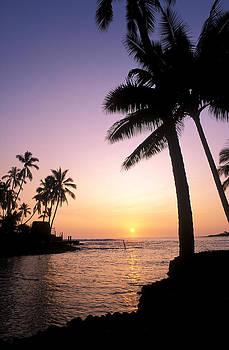 Spirits of Hawaii by Russ Bishop