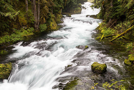 John Daly - Koosah Falls Cascades