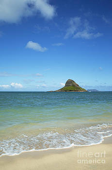 Charmian Vistaunet - Kualoa Beach Park and Mokoli