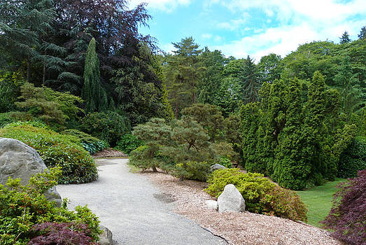 Kubota Garden in Seattle by Susan Porter