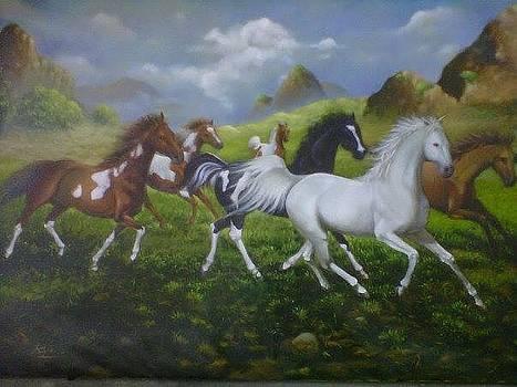 Kuda by Kris