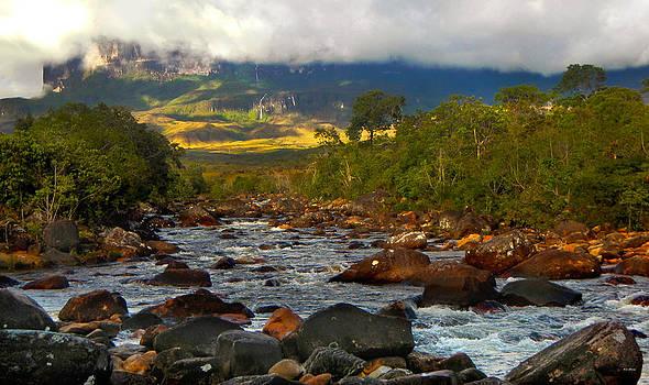 Bibi Rojas - Kukenan from the river