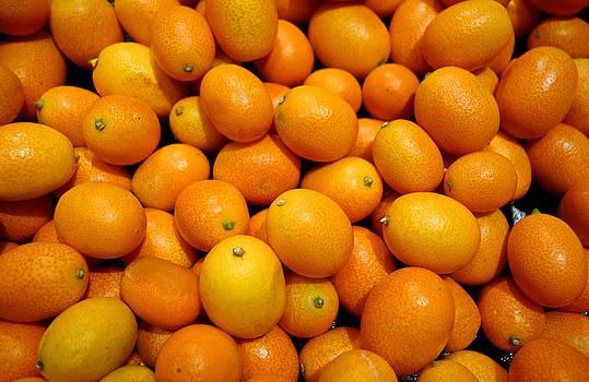 Robert Meyers-Lussier - Kumquats