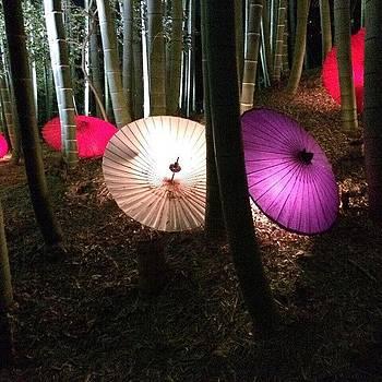 Kyoto by Yoshikazu Yamaguchi