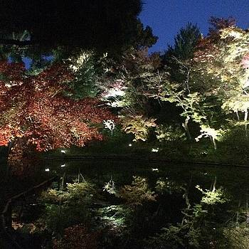 Kyoto2 by Yoshikazu Yamaguchi