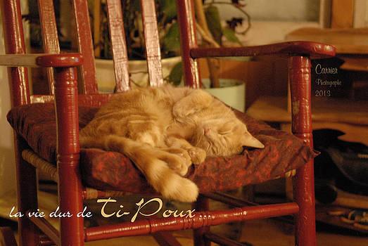 La Dur Vie De Ti-poux by Gino Carrier