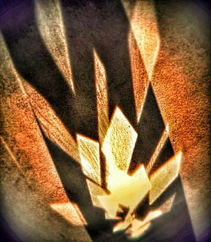 La flamme qui enflamme sans bruler by Steven Huszar