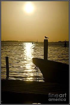 Agus Aldalur - La hora del sunset