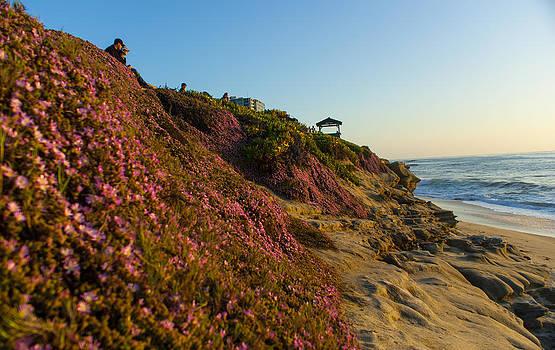 La Jolla Beach by Michael Hunter