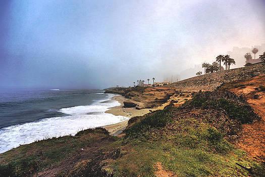 La Jolla Cove by Tejas Prints