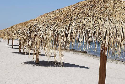 Ramunas Bruzas - La Paz Beach