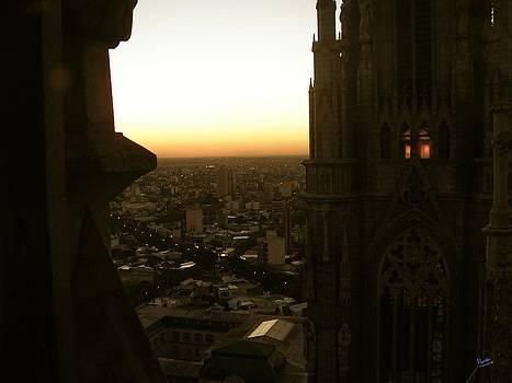 Marcello Cicchini - La Plata - Cathedral