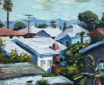 Roofs by John Matthew