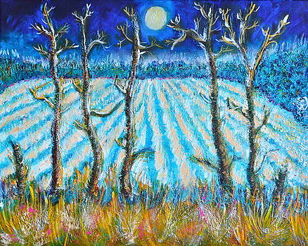 Labored Fields Under the Moon Light by Ion vincent DAnu