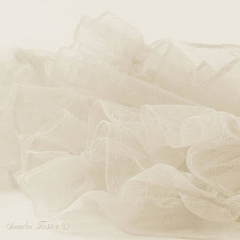 Sandra Foster - Lace And Ruffles Tablecoth In Sepia