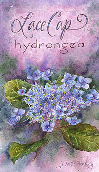 Lace Cap Hydrangea by Leslie Fehling