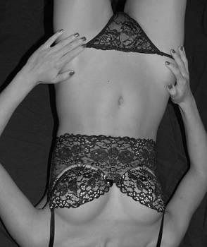 Lace by Don Van Fleet