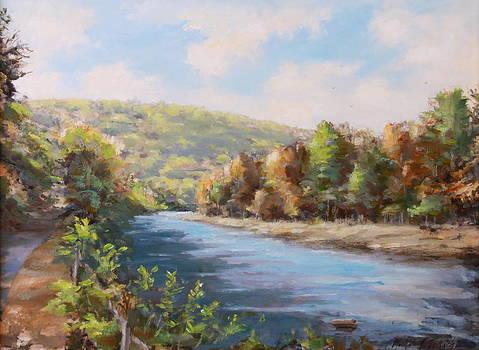 Lackawaxen River Fireman's Hole by Michele Tokach
